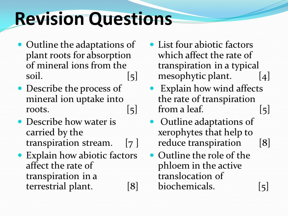 Revision Questions Outline the adaptations of plant roots for absorption of mineral ions from the soil. [5]